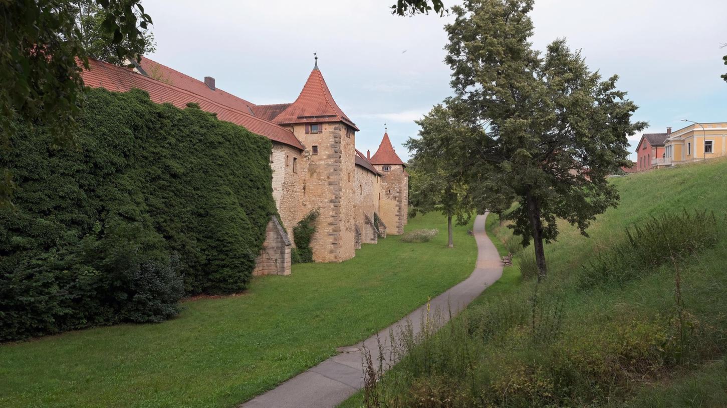 In Weißenburg sollen Essbare Landschaften entstehen. Als Standort wurde der Schießgrabenan der Südlichen Ringstraße gegenüber der Polizeiinspektion ausgewählt.