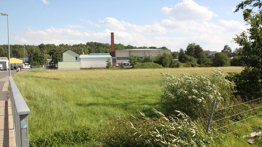 Allersberg: Bebauung contra Hochwasser und Ameisenbläuling
