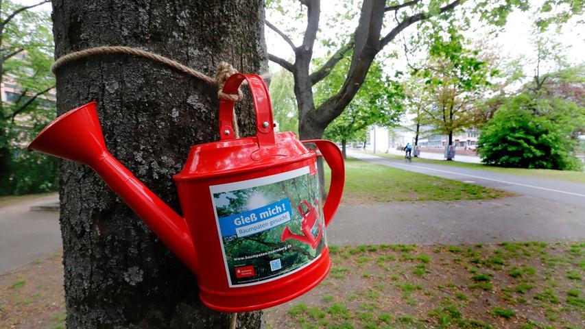 2019 war es so trocken, dass der Servicebetrieb Öffentlicher Raum (Sör) mithilfe roter Gießkannen die Nürnberger darum bat, Pflanzen und Bäume in der Stadt zu wässern. Solche Trockenphasen werden wohl häufiger werden.