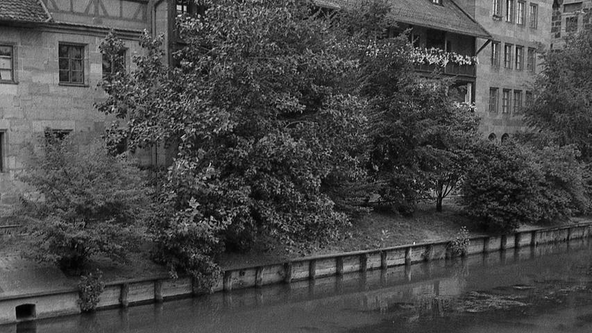 Die lange Trockenperiode schwört eine Katastrophe in Pegnitz, Rednitz und Regnitz herauf: wenn es nicht in nächster Zeit ausgiebig regnet, ist der Kulminationspunkt in den Gewässern bald erreicht. Hier geht es zum Kalenderblatt vom 12. August 1971:Gefahr ist groß -werden die Flüsse zu Kloaken?
