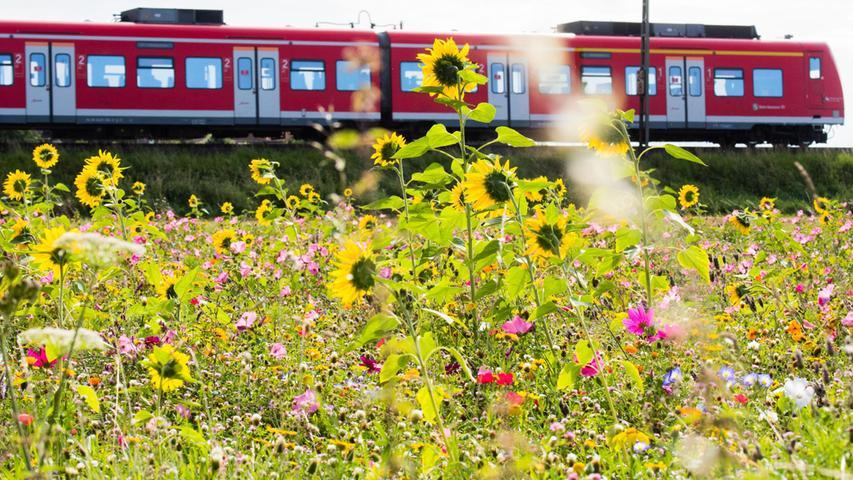 Schlechte Nachrichten für Bahnfahrer: Streik ist beschlossene Sache