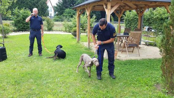 Pyrbaum: Suchhunde nahmen Fährte auf