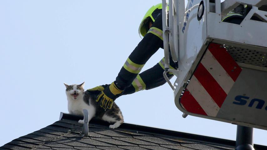 Im Spannungsfeld: Sich selbst helfen oder die Feuerwehr holen?