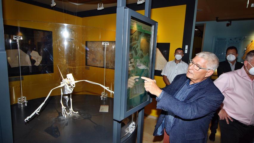 Die Archäopteryx-Nachbildung wird von den Besuchern im Bürgermeister-Müller-Museum auch immer ganz genau inspiziert.