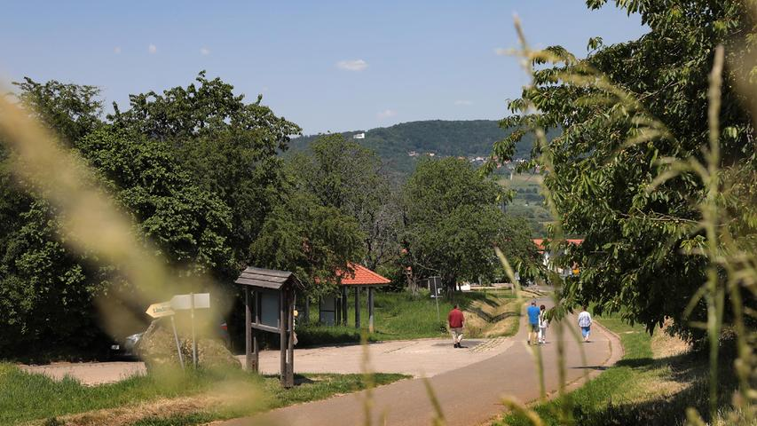 Endspurt: Skulpturenweg am Walberla soll Ende September eröffnet werden