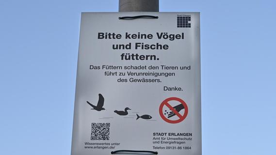 Kot-Problem am Dechsendorfer Weiher in Erlangen