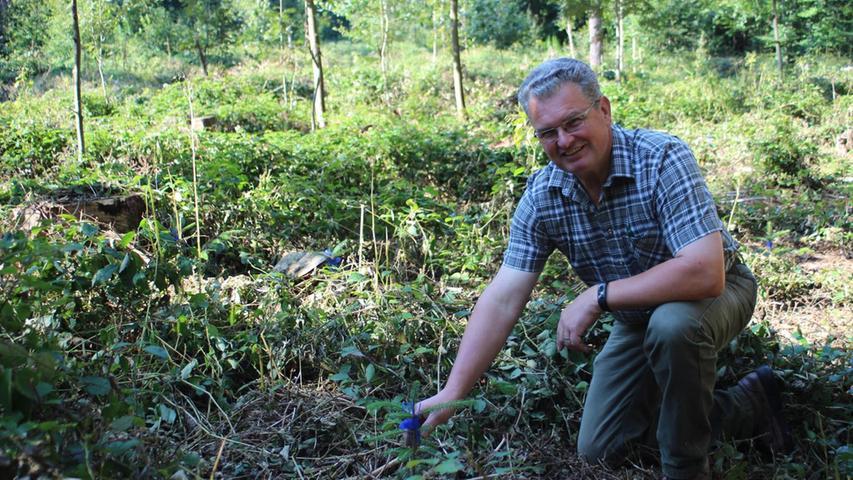 Eine Verschnaufpause für den Fürther Stadtwald