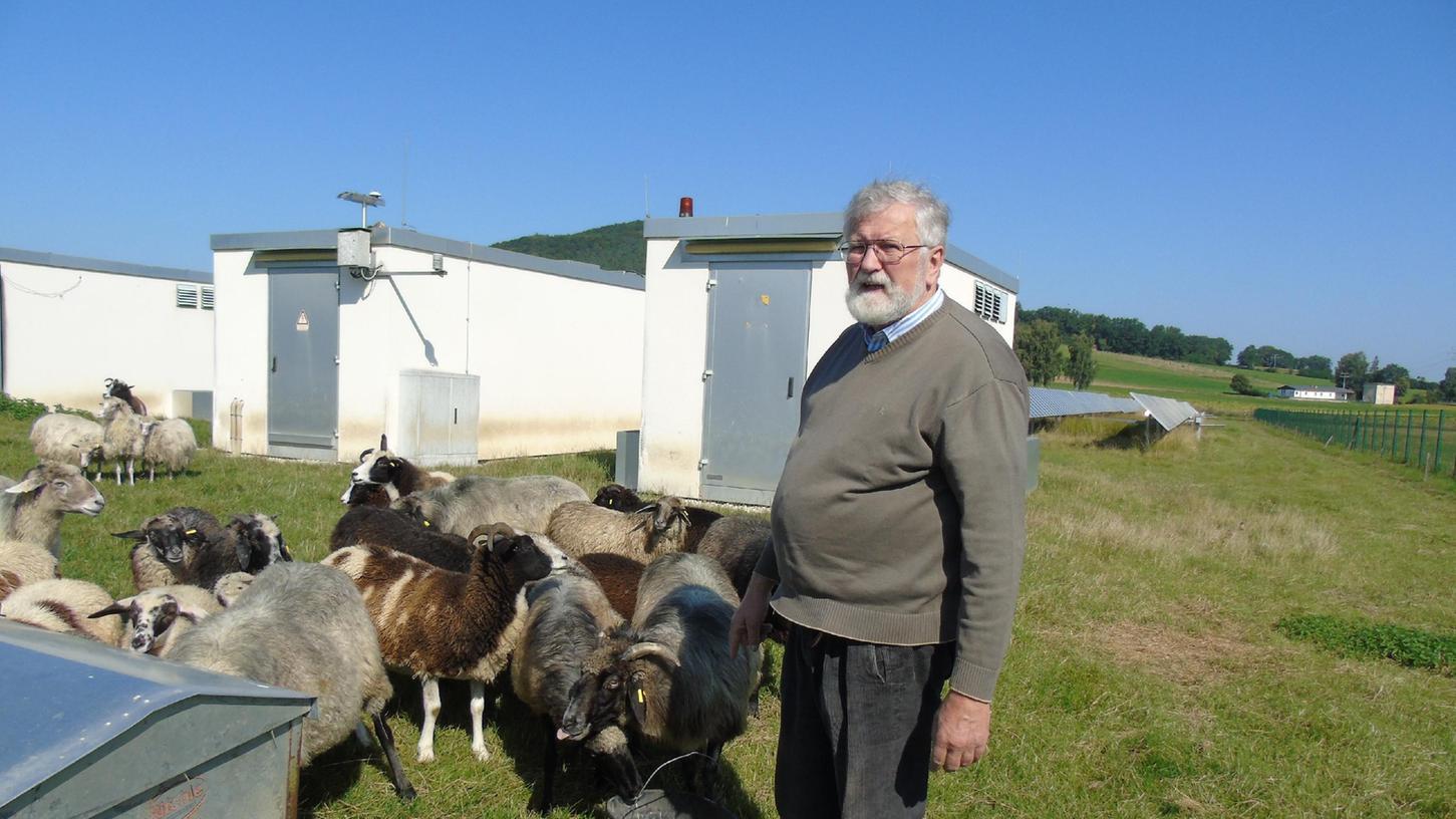 Johann Georg Gloßner mit einigen seiner vielen Schafe in der Solaranlage.