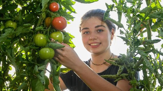Selma Dietz inmitten von Tomaten.