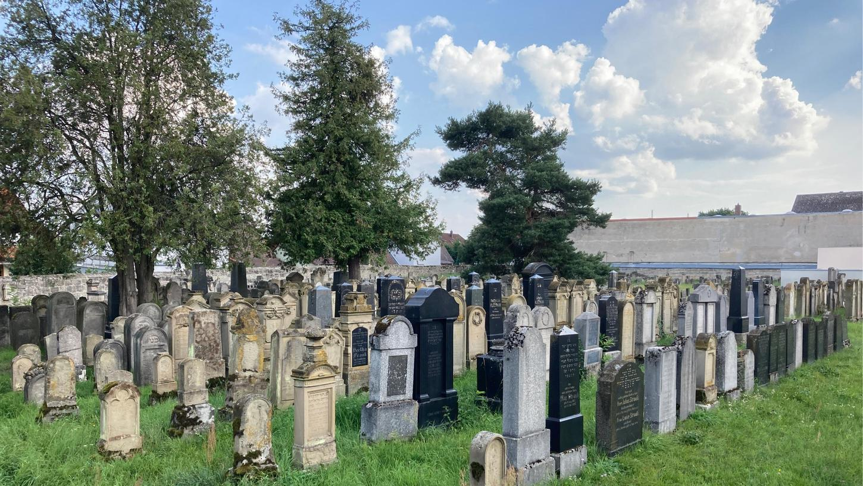 Eine neue Broschüre über den jüdischen Friedhof in Baiersdorf widmet sich unter anderem dessenLage innerhalb der Stadtmauern oder der außergewöhnlichenAusrichtung der Gräber.