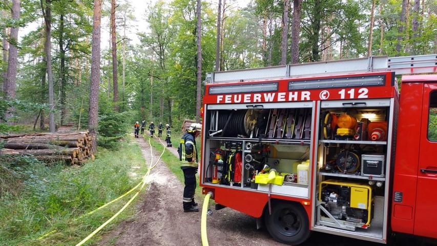 Ein Waldbrand, der sich schnell ausbreitete, wurde simuliert.