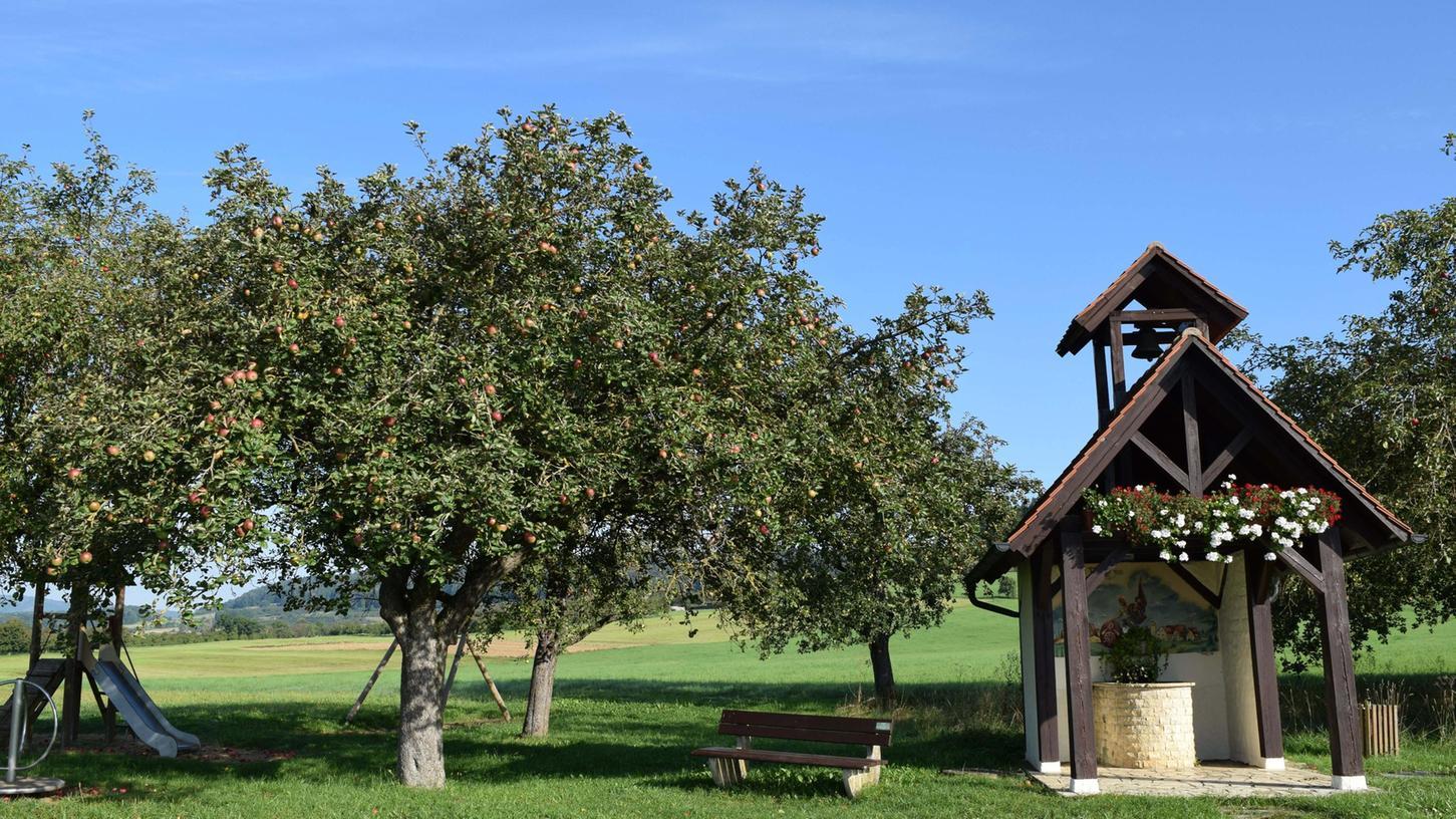 Streuobstwiesen-Besitzer in ganz Eckental können mit einem gelben Band ihre Bäume und Sträucher kennzeichnen und so anzeigen, dass diese zum Abernten für Jedermann freigegeben sind.