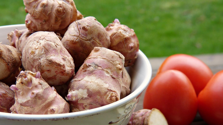 Topinambur ist in der Küche und im Gartenbeet nach wie vor ein Geheimtipp.