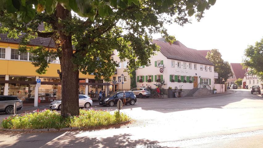 Die Friedenseiche in Burgbernheim heute. Der Baum ist gesund, ein Blumenbeet lockert die ihn umgebende Asphaltlandschaft wohltuend auf.
