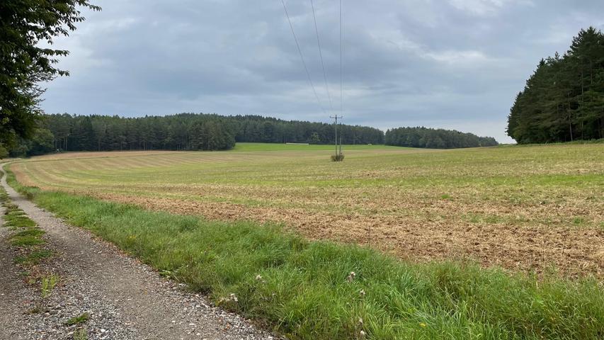 Hier in der Nähe von Oberfellendorf könnte ein neuer100.000 Quadratmeter großer Solarpark entstehen.