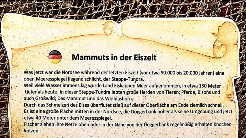 """Gesehen von Ralf Hanisch aus Heilsbronn auf der holländischen Insel Texel im Strandgutmuseum """"Maritiem en Juttersmusum""""."""