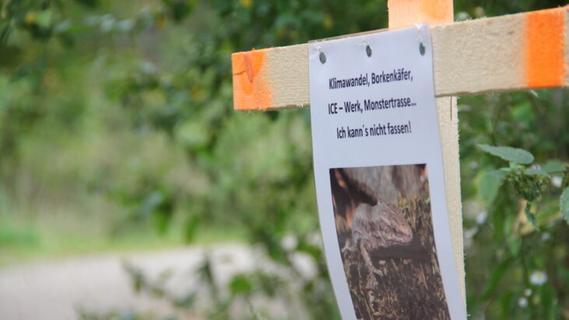 ICE-Werk: Bürgerinitiative Pro Grün will