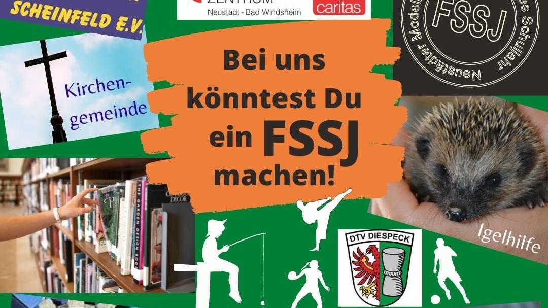 Mit dessen Vielfalt wirbt das Freiwilligenzentrum für das FSSJ.