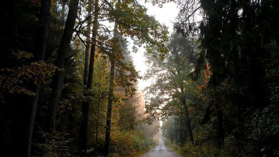 Unbekannte verschwanden im Wald: Polizei sucht schwarze Limousine