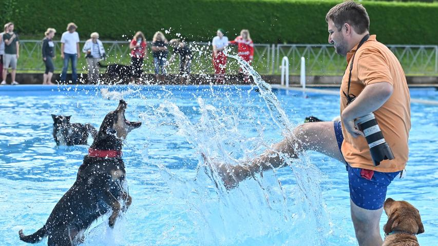 Nach coronagerechter Registrierung ging es los, und die Hunde konnten es kaum erwarten, sich unter einem tiefblauen Himmel in das ebensolche Wasser zu stürzen - mit sichtlicher Begeisterung. Neben dem ständigen Platschen hört man vergnügtes Jaulen und Bellen.