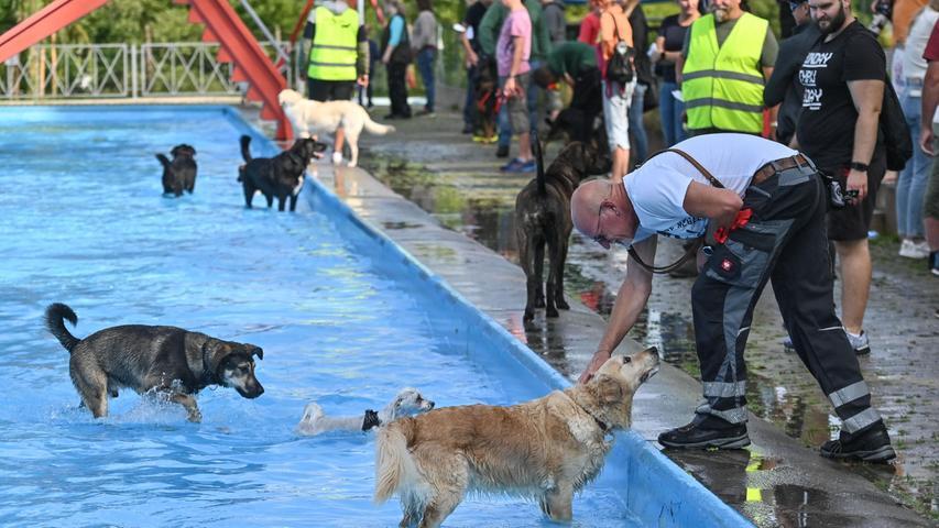 """Beobachtet wurde das wilde Treiben auch von den Mitgliedern der Thalmässinger Wasserwacht, die das ganze Jahr über die Aufsicht über die (menschlichen) Badegäste haben. Heute hatten sie nicht viel zu tun. """"Das einzige, was wir heute machen, ist Hunde streicheln"""", freute sich Anika Zentgraf, die diesen Tag als """"einen der schönsten Tage der Jahres"""" bezeichnete."""