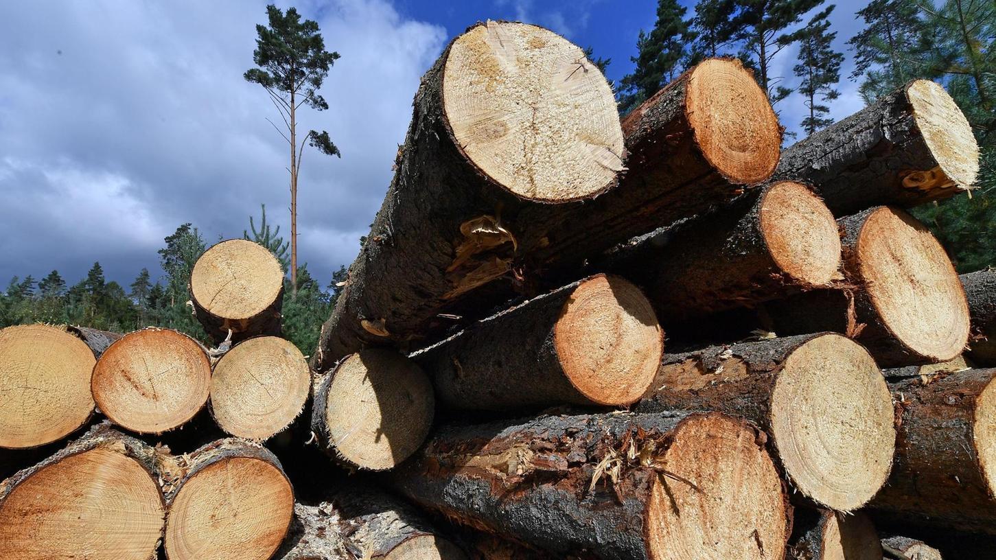 """Holz ist in der Region ein wertvoller und wichtiger Rohstoff. Nun hat sich die Situation, die mitunter als """"Versorgungskrise"""" bezeichnet wurde, aus verschiedenen Gründen wieder entspannt."""