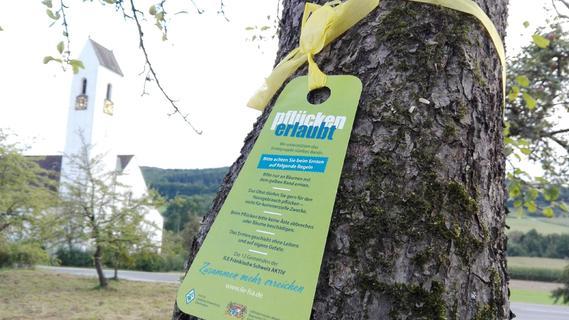 Fränkische Schweiz: Hier darf gepflückt werden