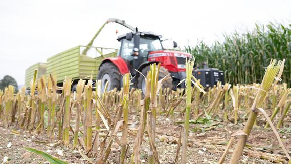 Enormer Schaden durch Metall im Maisfeld bei Schmidmühlen