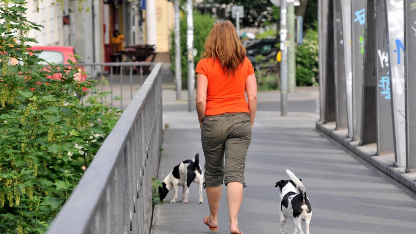 Auch in Nürnberg lassen immer mehr Hundehalter ihren Vierbeiner von der Leine.