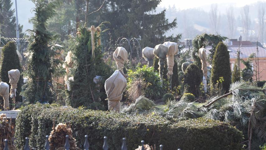 Gut verpackte Gestalten: Bei der Bayerischen Gartenakademie in Veitshöchheim wissen die Experten, wie es geht.