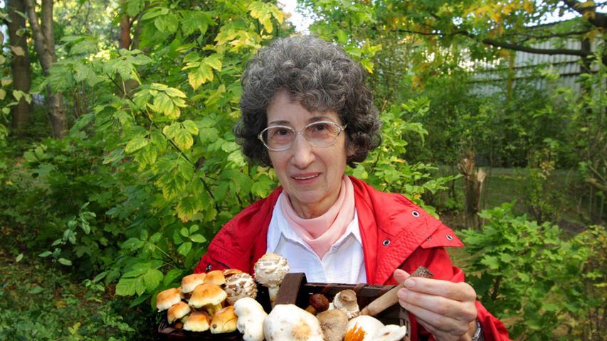 Neue Arten: Klimawandel lässt auch giftige Pilze wachsen