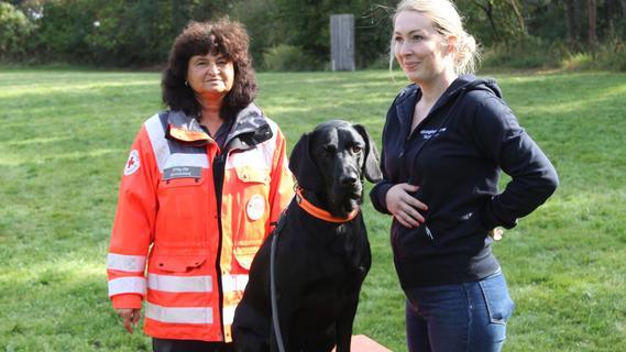 Höchstadt: Wie Rettungshunde ausgebildet werden