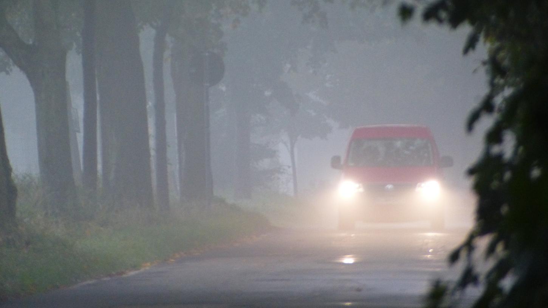 Nebel: Im Herbst muss mit schlechten Sichtverhältnissen gerechnet werden.