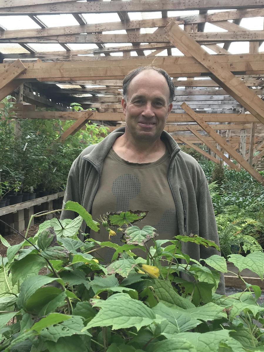 Frank Schneller steht inmitten seiner Baumschule in Birkenhof. Das riesige, Schatten spendende Dach über seiner Gärtnerei ermöglicht es ihm, dass er seinePflanzen nur ab und zu mit Regenwasser gießen muss.