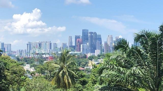 Singapur öffnet wieder - und will anders werden