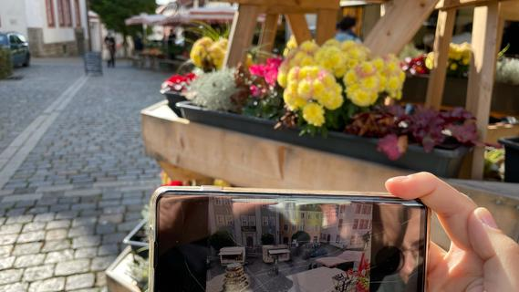 Regionale Anbieter unterstützen: Kommt der Online-Marktplatz im Landkreis?