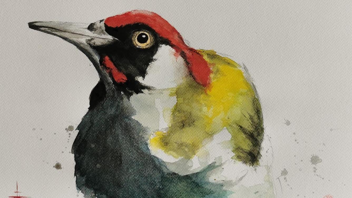 Herbert Herlitz aus Ebermannstadt zaubert mit vielen Farben und eleganten Pinselstrichen lebendige Vögel auf die Leinwand.
