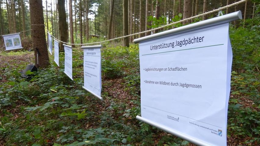 Mit Plakaten an der Leine verdeutlichten die Förster die Situation im Wald.