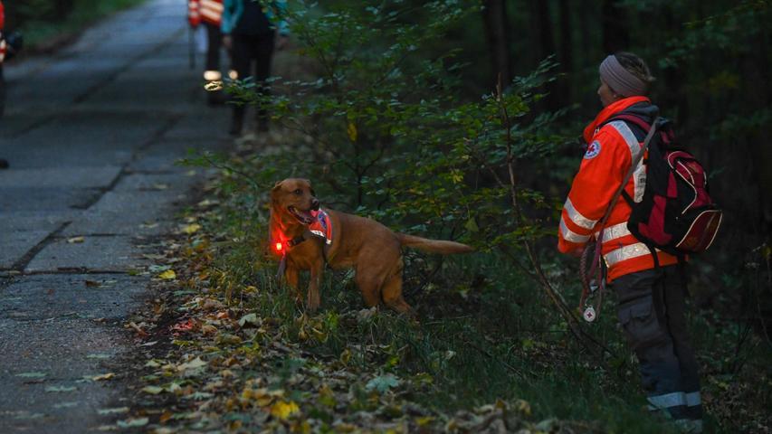 Personensuchhunde wie Flächensuchhunde kamen zum Einsatz.