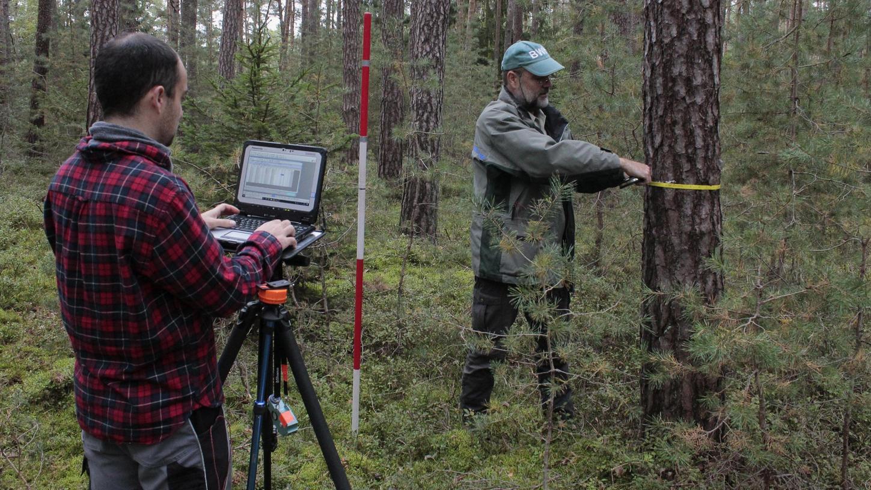 Mehr als ein Jahr lang sind Rainer Fuchs (links) und Dirk Wahl Tag für Tag im Wald unterwegs, um Daten über Bayerns Forst zu erfassen. Hier messen sie den Durchmesser einer Kiefer in einem Privatwald bei Cadolzburg. Das Maßband ist natürlich nicht Hightech, wohl aber GPS-Empfänger und Ultraschall-Höhenmessgerät.