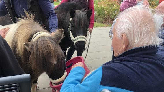 Ponys zu Besuch im Seniorenheim