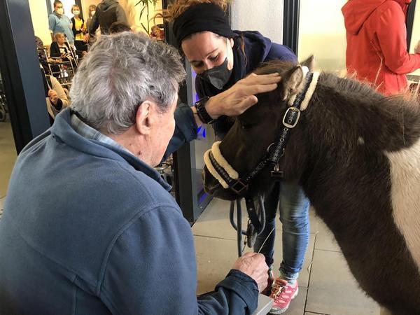 Keine Berührungsängste: Sandra Wägemann führte die Tiere gezielt zu den Menschen, so dass die Bewohner die Ponys streicheln und füttern konnten.