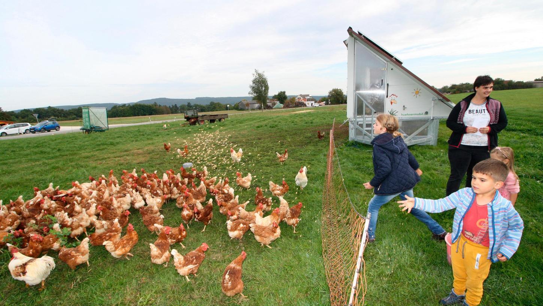 Die Kinder hatten jede Menge Spaß beim Füttern der Hühner.