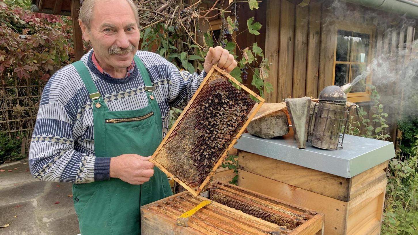 """Den 29 Bienenvölkern von Anton Herzing geht es gut und das ist das Wichtigste für den Imker. """"Es geht mir weniger um den Ertrag als um die Gesundheit der Bienen und anderer Insekten"""", sagt er."""