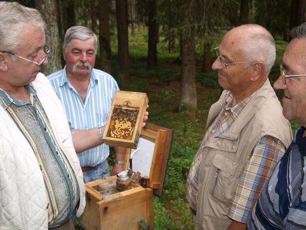 Der Züchter Bernhard Lang ist Mitglied des Imkerkreisverbands sowie des Bienenzuchtvereins Pegnitz. Auf dem Foto präsentiert er an der Belegstelle Hufeisen eine Königinnenzuchtstation.