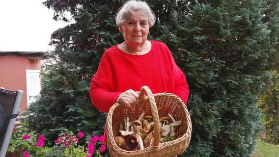 Pilze roh essen? Expertin aus dem Landkreis Fürth gibt Tipps