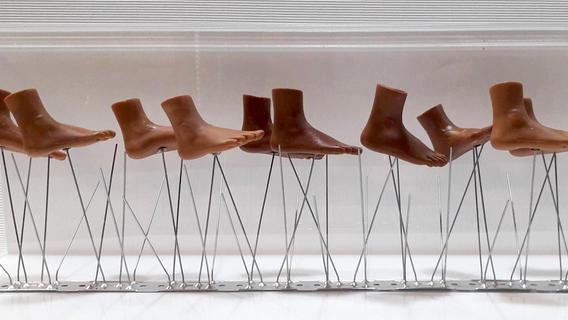 So weit die Füße tragen: Fürther Ateliers und Galerien laden ein