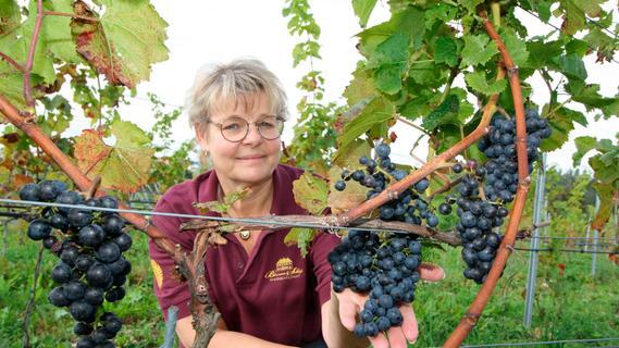 Der Landkreis Roth wird zur Weinregion
