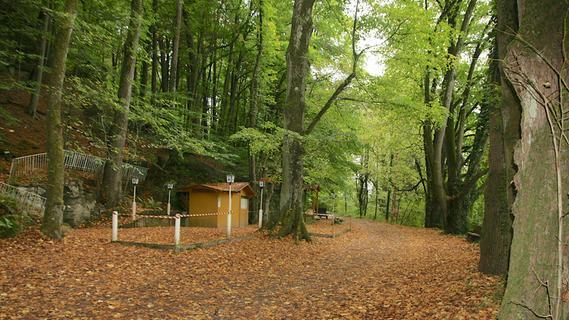Ebermannstadt: Mächtige Linden am