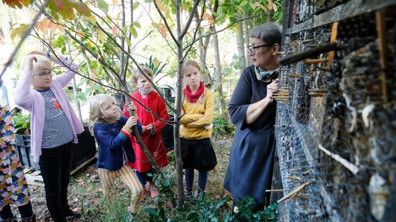 Im Nürnberger Stadtgarten der Natur näher kommen